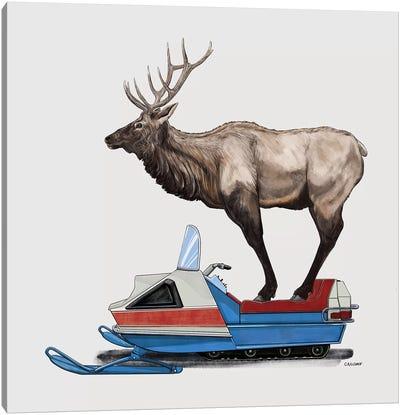 Elk On Skidoo Canvas Art Print