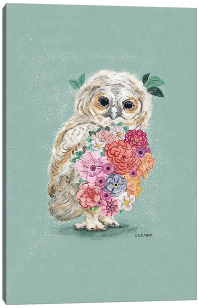 Flower Owl Canvas Art Print