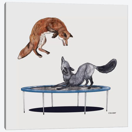 Foxes On Trampoline Canvas Print #CAE21} by Carolynn Elshof Canvas Art Print