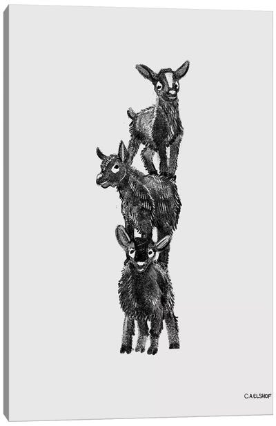 Goat Stack Canvas Art Print
