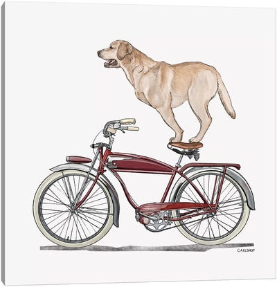 Golden Lab On Bicycle Canvas Art Print