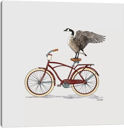 Goose On Bicycle Canvas Art Print