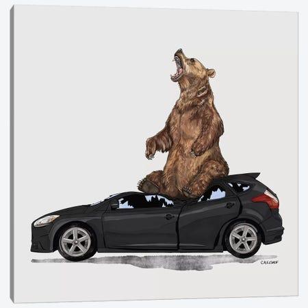 Grizzly Bear On Ford Focus 3-Piece Canvas #CAE26} by Carolynn Elshof Canvas Art