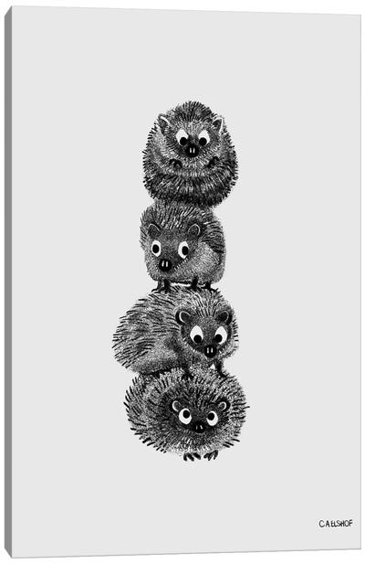 Hedgehog Stack Canvas Art Print
