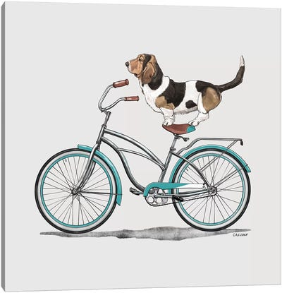 Basset Hound On Bicycle Canvas Art Print