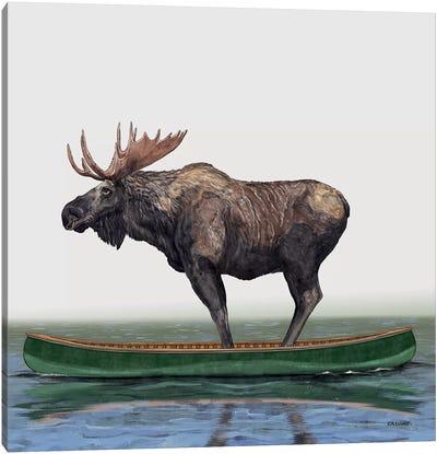 Moose In Canoe Canvas Art Print