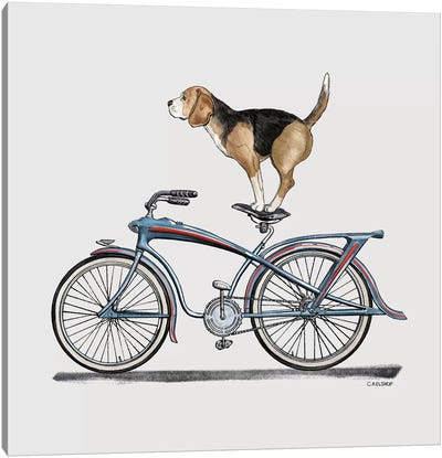 Beagle On Bicycle Canvas Art Print