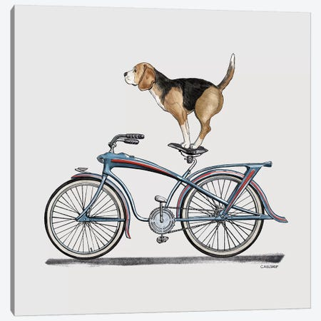 Beagle On Bicycle Canvas Print #CAE3} by Carolynn Elshof Canvas Print