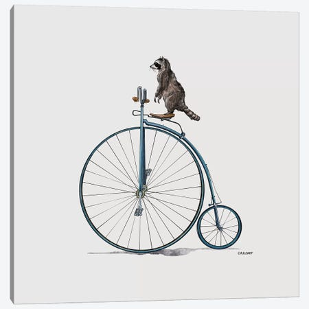Raccoon On Pennyfarthing Canvas Print #CAE40} by Carolynn Elshof Canvas Print