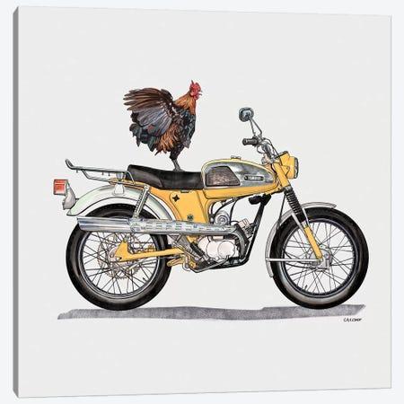 Rooster On Yamaha Canvas Print #CAE42} by Carolynn Elshof Canvas Print