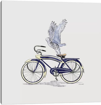 Snowy Owl On Bicycle Canvas Art Print