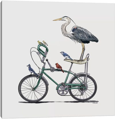 Birds On Bike Canvas Art Print