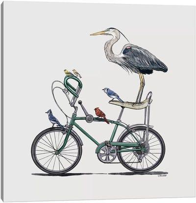 Birds On Bike Canvas Art Print
