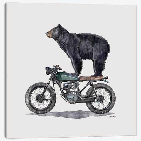 Black Bear On Motorcycle Canvas Print #CAE7} by Carolynn Elshof Canvas Art