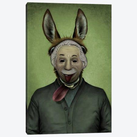 Prodigy Donkey Canvas Print #CAF13} by Carlos Fernandez Canvas Art Print