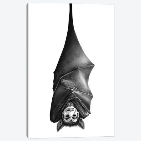 Bat Canvas Print #CAF3} by Carlos Fernandez Canvas Wall Art
