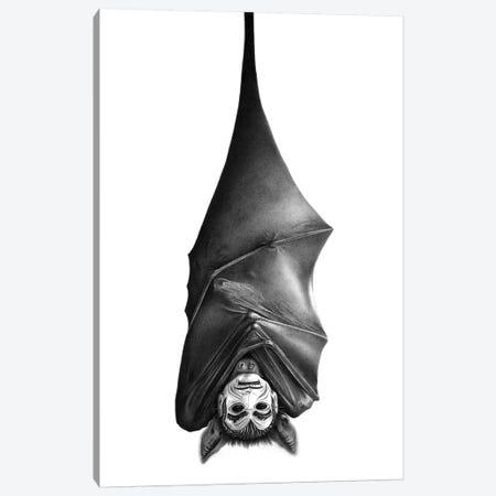 Bat Canvas Print #CAF3} by Carlos Fernandez Canvas Wall Art