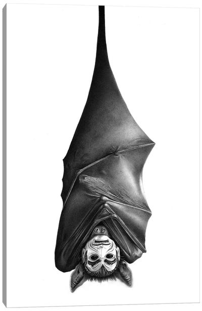 Bat Canvas Art Print