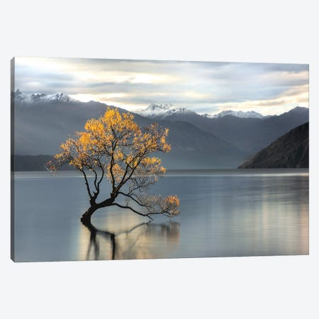 Undisturbed Canvas Print #CAH2} by Michael Cahill Canvas Art