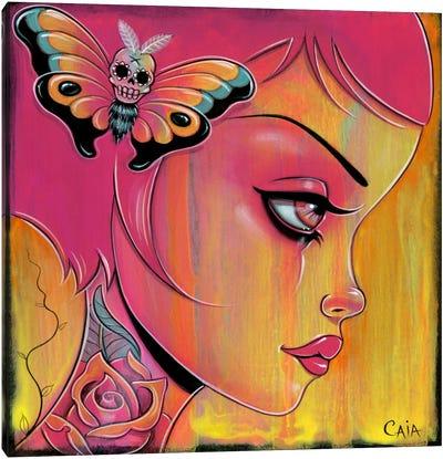 Mango Sunset Canvas Print #CAI27
