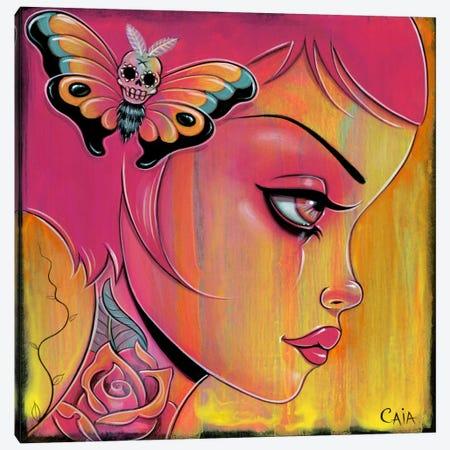 Mango Sunset Canvas Print #CAI27} by Caia Koopman Canvas Art