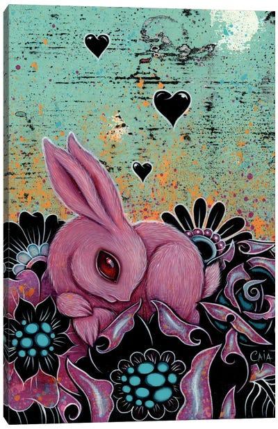 Pink Bunny Canvas Print #CAI34