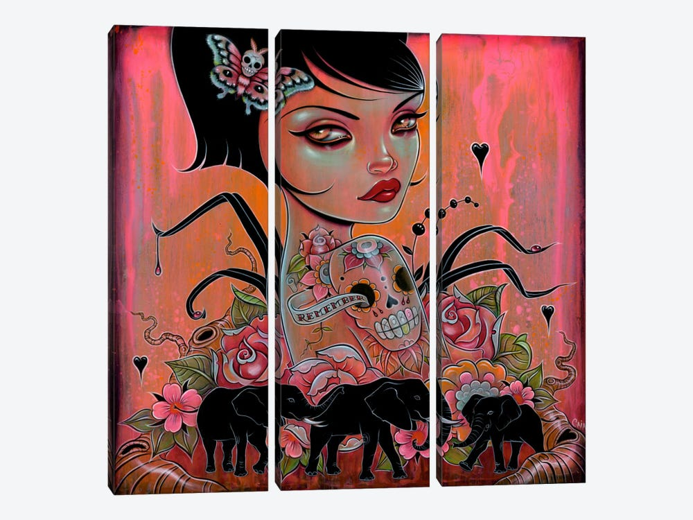 Remember The Elephants by Caia Koopman 3-piece Art Print