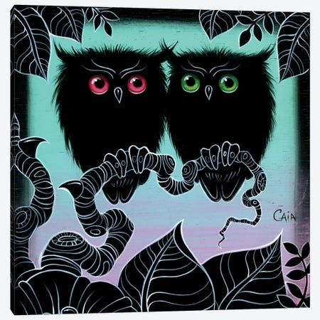 Mini 2 Hoots Canvas Print #CAI55} by Caia Koopman Canvas Print