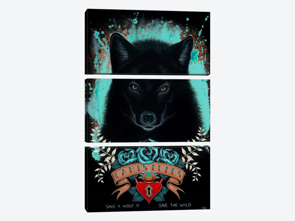 Canis Lupus by Caia Koopman 3-piece Canvas Wall Art