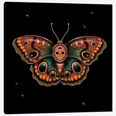 Calavera Lepidoptera Canvas Print #CAI60} by Caia Koopman Canvas Print