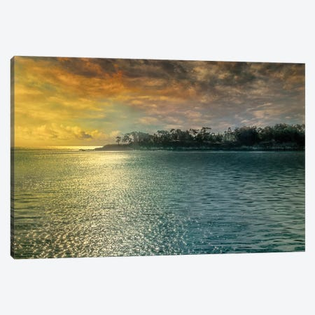 Mystic Island Canvas Print #CAL17} by Mike Calascibetta Canvas Art