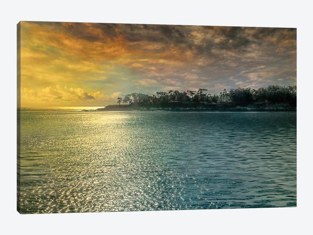 Mystic Island by Mike Calascibetta 1-piece Art Print