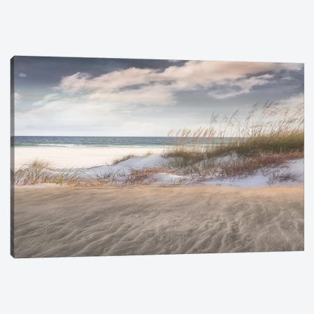 Amongst The Sea Grass Canvas Print #CAL32} by Mike Calascibetta Art Print