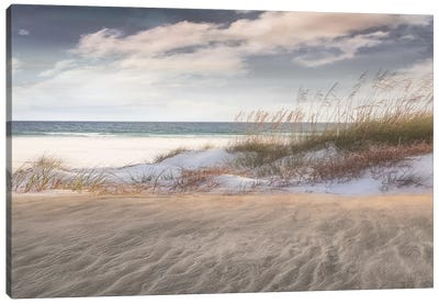 Amongst The Sea Grass Canvas Art Print