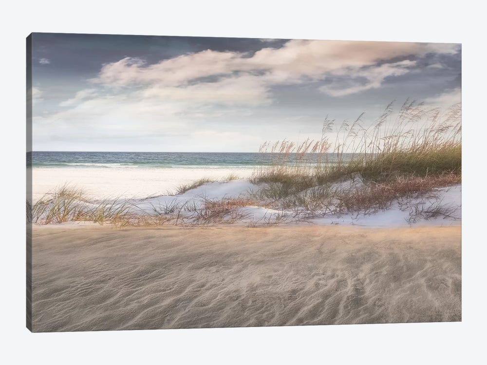 Amongst The Sea Grass by Mike Calascibetta 1-piece Canvas Wall Art