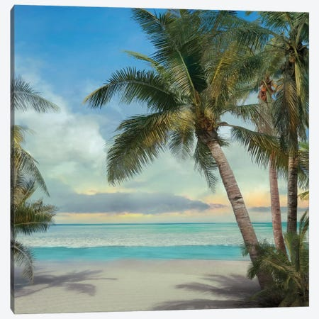 A Found Paradise II Canvas Print #CAL39} by Mike Calascibetta Art Print