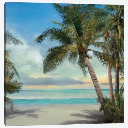 A Found Paradise II 3-Piece Canvas #CAL39} by Mike Calascibetta Art Print