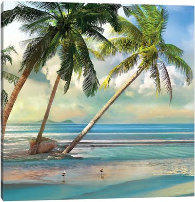 A Found Paradise III Canvas Art Print