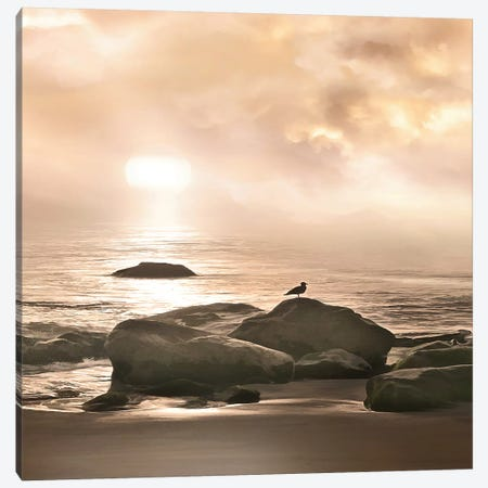 Malibu Sunset Canvas Print #CAL50} by Mike Calascibetta Canvas Print