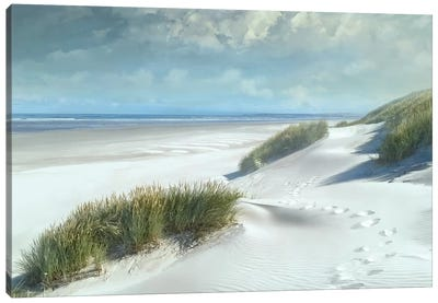 White Sands Canvas Art Print