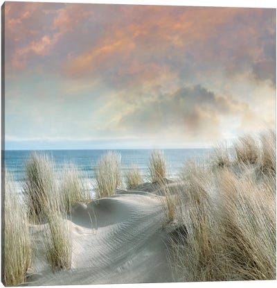 Windswept I Canvas Art Print