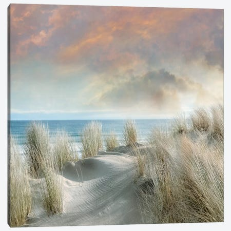 Windswept I Canvas Print #CAL62} by Mike Calascibetta Canvas Art