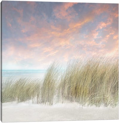 Windswept II Canvas Art Print