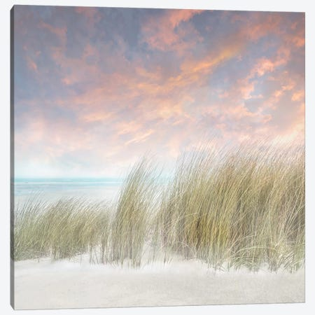 Windswept II Canvas Print #CAL63} by Mike Calascibetta Canvas Art