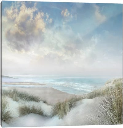 Windswept III Canvas Art Print