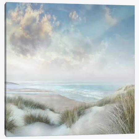 Windswept III Canvas Print #CAL64} by Mike Calascibetta Canvas Art Print