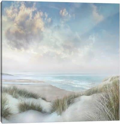 Windswept III Canvas Art Print
