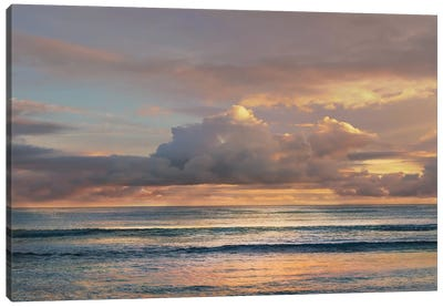 A Morning Meditation Canvas Art Print