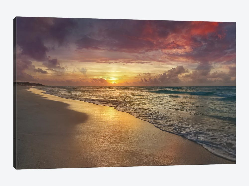 Harmony by Mike Calascibetta 1-piece Canvas Artwork