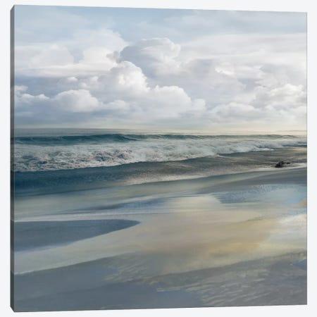 Shades Of Grey Canvas Print #CAL84} by Mike Calascibetta Canvas Art Print